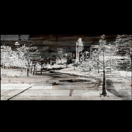 Gene Leahy Mall Snow Canvas