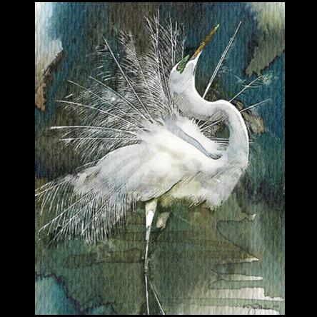 """Strike A Pose"" Egret Canvas"